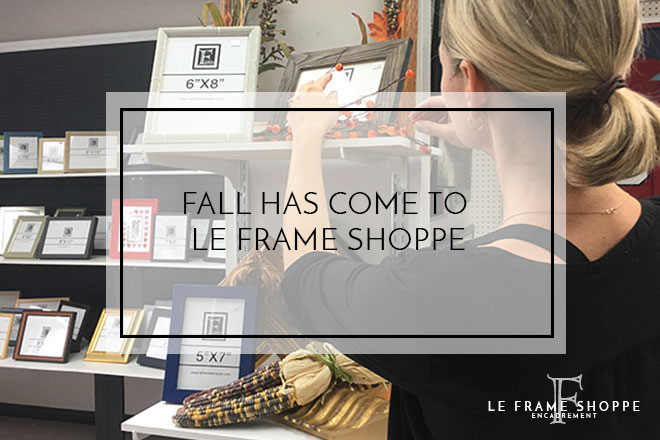 Le Frame Shoppe Blog | Fall Decorations